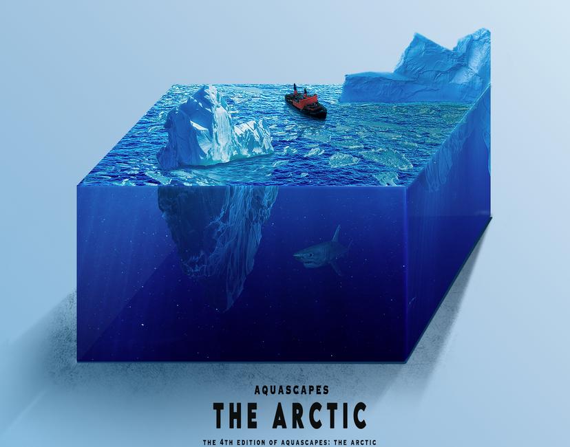 Nft Aquascapes #4 - The Arctic
